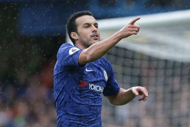 Roma offer Pedro contract after Chelsea talks collapse - Bóng Đá