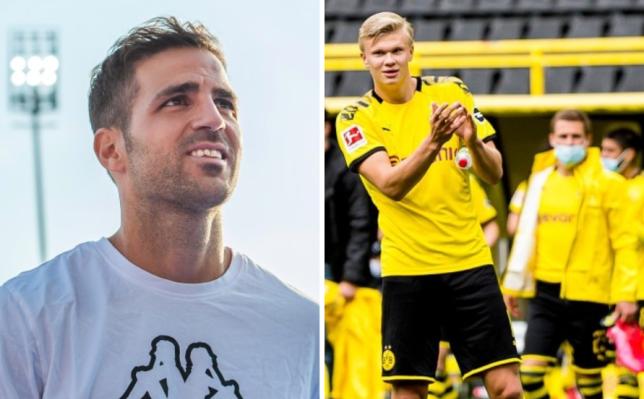 'It's like a training session!' – Cesc Fabregas unimpressed with Bundesliga return - Bóng Đá