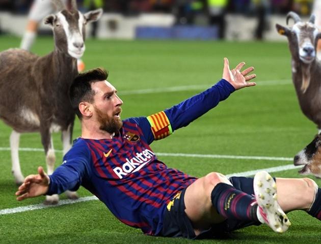 Góc biếm họa: Lionel Messi - Ông hoàng sau đêm Camp Nou huyền ảo - Bóng Đá