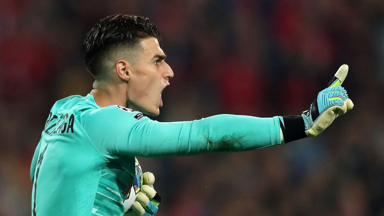 Kepa could easily be Chelsea's goalkeeper for the next 15 years, says Schwarzer - Bóng Đá