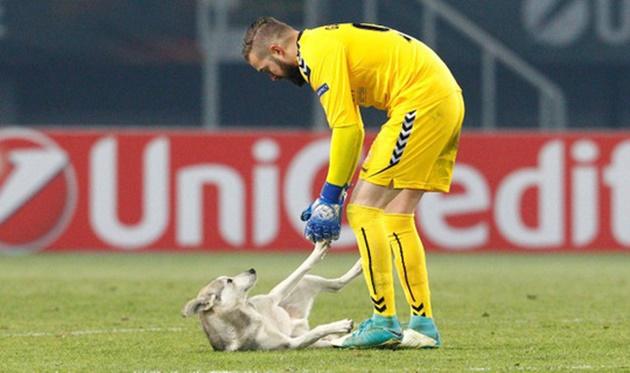 Trận đấu ở Europa League bị gián đoạn vì