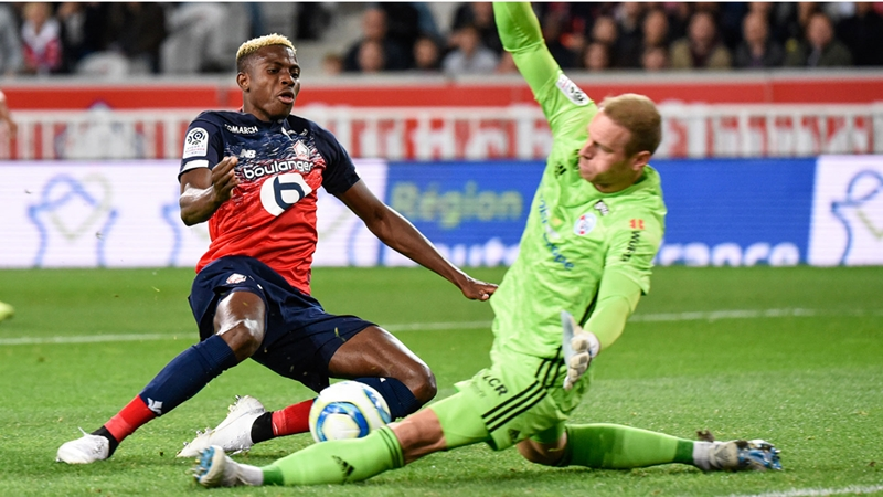 'Lille Replaced Pepe With A Better Player' - Fans Hail Osimhen As Super Eagle - Bóng Đá
