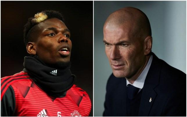 Zinedine Zidane approves Real Madrid's move to sign Eduardo Camavinga as Paul Pogba alternative  - Bóng Đá