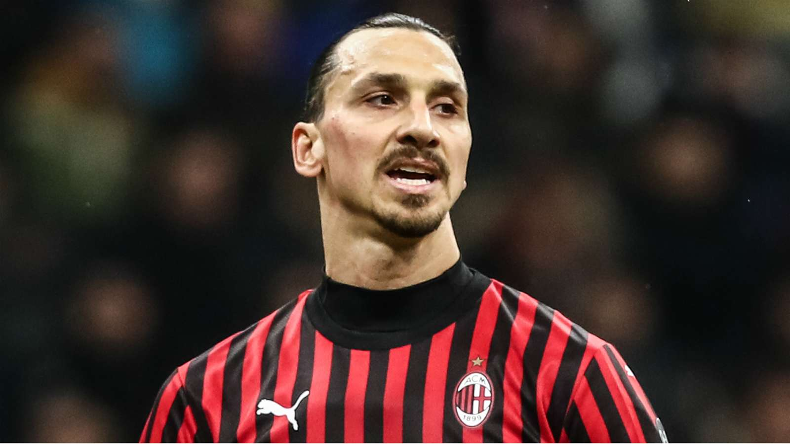 Hammarby sporting director says Zlatan could sign for the club - Bóng Đá