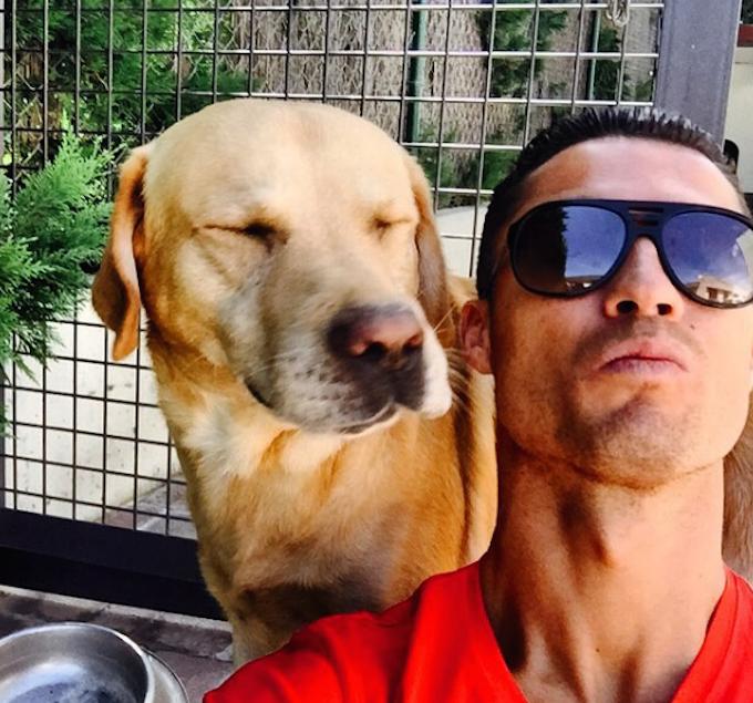 Đội hình chó cưng nổi tiếng nhất thế giới bóng đá - Bóng Đá