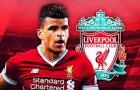 Dominic Solanke, chàng tân binh đang chơi cực hay của Liverpool