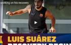 Trị chấn thương, Luis Suarez tập chạy trên sân cát