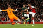 Walcott nổ súng, Arsenal nhẹ nhàng đi tiếp ở League Cup