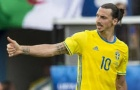 Toàn bộ các bàn thắng của Zlatan Ibrahimovic trong màu áo Thụy Điển