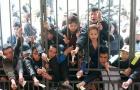 Điểm tin bóng đá Việt Nam tối 16/03: Vé trận Hải Phòng - HAGL nóng đỉnh điểm