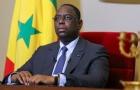 Tổng thống Senegal dự khán trận đấu với Ba Lan