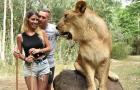 Bạo gan, cựu sao Barca vừa hôn bạn gái, vừa 'chọc tức' sư tử
