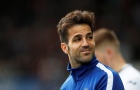 Phản ứng của Fabregas khi chứng kiến 'điều tồi tệ' xảy ra với Chelsea
