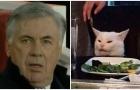 Arsenal ghi bàn siêu nhanh, Ancelotti hóa chú mèo 'Smudgei'