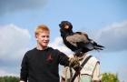 Top 5 sao sân cỏ mê mẩn thú vui chim cảnh