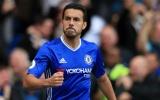 Chelsea gật đầu, Pedro tới bến đỗ không ngờ?