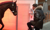 Cười té ghế với điệu nhảy ngựa tỉnh bơ của Thomas Muller