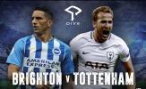 23h30 ngày 22/09, Brighton vs Tottenham Hotspur: Chặn đứng đà tụt dốc