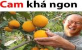 Cười té ghế với loạt ảnh chế trận U22 Việt Nam đè bẹp Campuchia