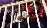 V-League 2017: Sự cố 2 vé trùng số serie ở trận TP.HCM - Long An