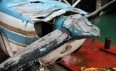 Hình ảnh trục vớt máy bay chở Emiliano Sala và Dave Ibbotson