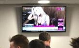 CĐV xem cúp Liên đoàn Anh sốc toàn tập khi giải trí bằng... phim khiêu dâm