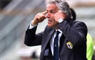 Donadoni nhận việc ở Bologna, Mihajlović bớt lo