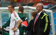 """Góc nhìn: Torres trở lại, Del Bosque """"khổ vì sướng"""""""