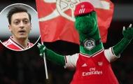 CĐV Arsenal phát rồ: 'Ozil đã chiến thắng'