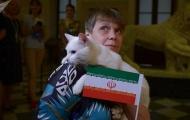Mèo Achilles dự đoán trận Iran vs Morocco