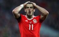 Wales 1-1 Georgia (vòng loại World Cup 2018)