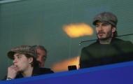 Beckham thất thần nhìn Man Utd bị loại khỏi cúp FA