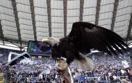 01h45 ngày 10/04, Lazio vs Napoli: Đại bàng tung cánh?