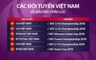 VFF cần 70 tỷ đồng cho 6 đội tuyển dự VCK châu Á