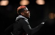 Điểm tin sáng 19/11: Ibra tuyên bố ngông nghênh; Mourinho hết lời khen Pogba