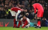 HLV Wenger hé lộ tình hình chấn thương của Wilshere