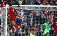 Sau 14 vòng, Liverpool đã trụ hạng thành công