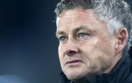 CĐV Man Utd: 'Đồ bỏ; Anh ta nên chơi cho Norwich'