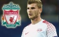 Lộ điều khoản bí mật, Liverpool sáng cửa chiêu mộ 'sát thủ 18 bàn/17 trận'