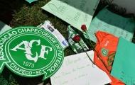 Chapecoense được làng bóng Brazil hỗ trợ vô điều kiện