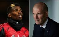 'Gạt phăng' Pogba, Zidane ủng hộ Real chiêu mộ 'tiền vệ vạn người mê'