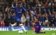 Ferdinand khen sao Chelsea: 'Một siêu sao tương lai'