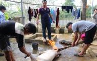 Gia đình 'đôi tay vàng' Bùi Tiến Dũng mổ lợn khao chiến công của U23 Việt Nam