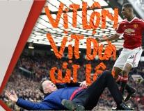 Vào ngày này |28.2| Kỷ niệm 1 năm van Gaal té 'ngửa mặt lên'