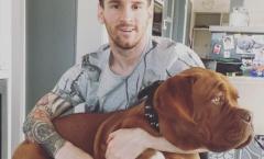 Hoảng hốt với ảnh Messi khoe chó cưng ngoại cỡ