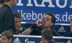 Bác sỹ của Schalke đã cho trọng tài Manuel Gräfe uống gì?