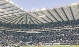 Khán giả có thể bị cấm hét hò khi trở lại sân vận động