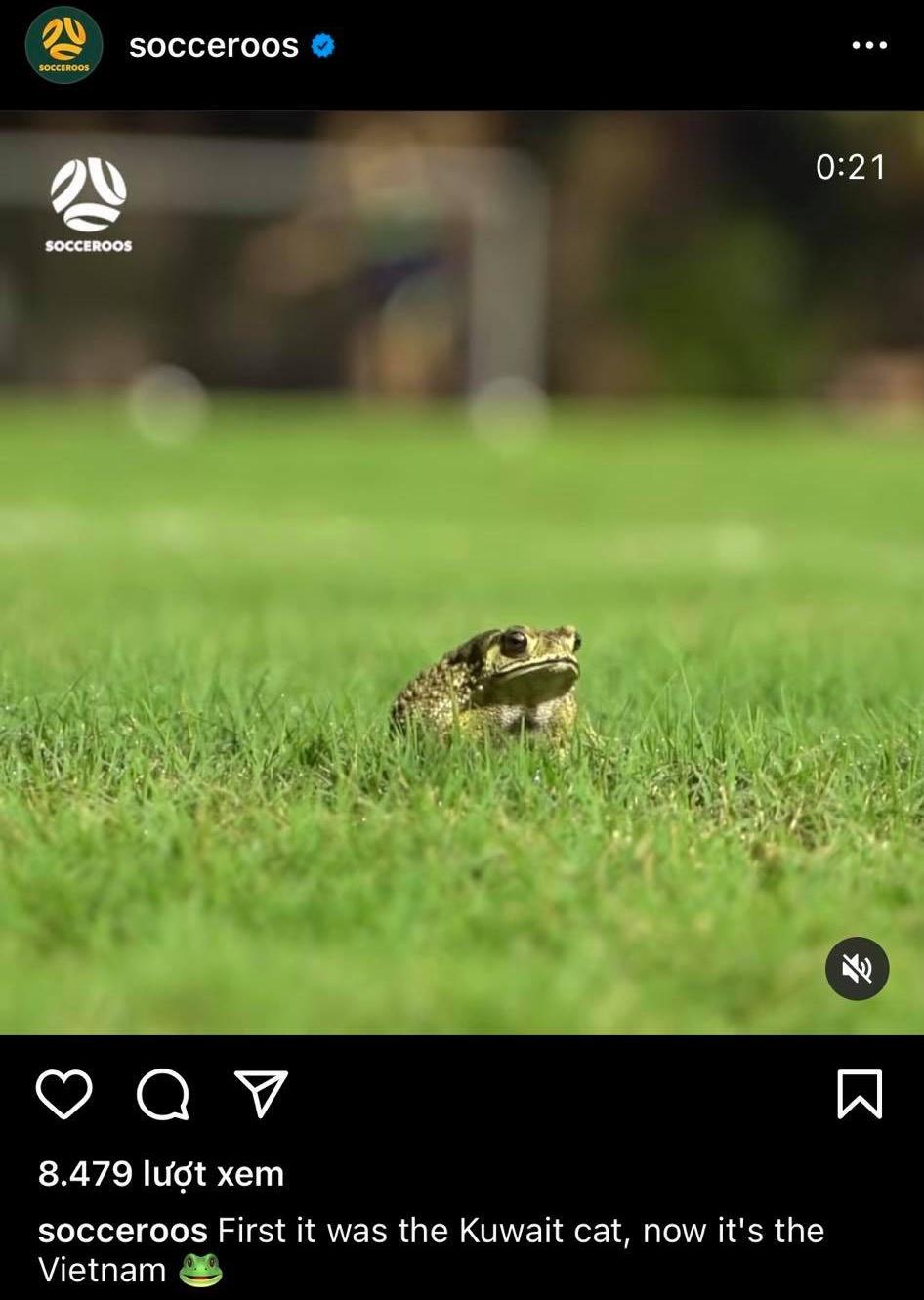 Lee Gaskin on Vietnam grass - Bóng Đá
