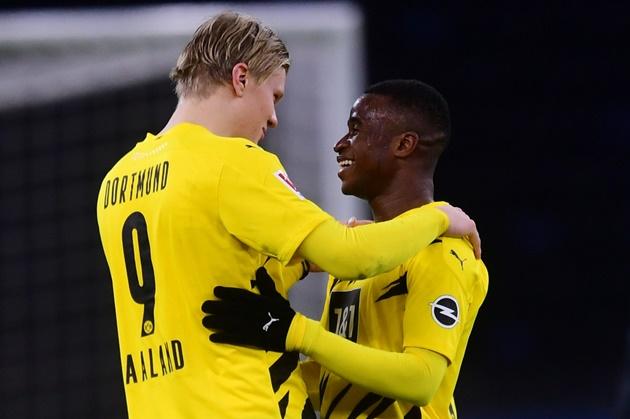 Haaland and Moukoko can play together, says Dortmund coach Terzic - Bóng Đá