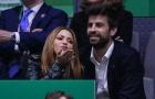 Vợ Pique – Shakira bị lợn rừng tấn công